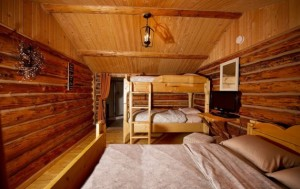 panther cabin 2